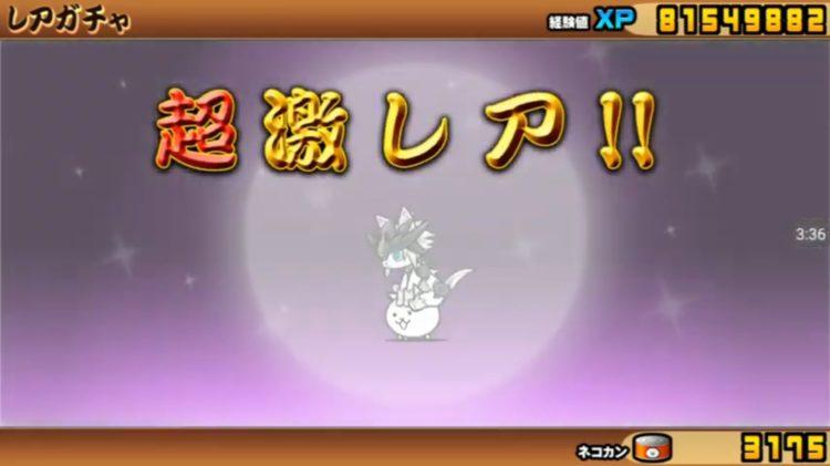 超ネコ祭 幼獣ガオ出る!