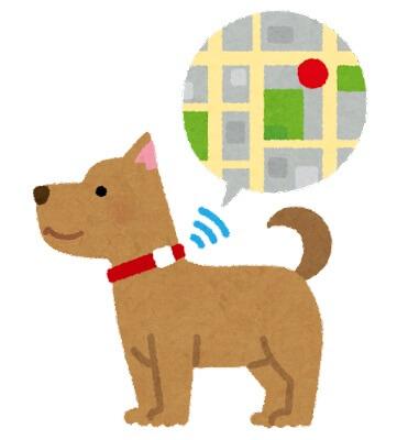 EXIF情報 GPS情報 削除方法